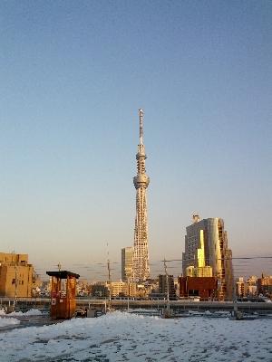 浅草駅の屋上から見たスカイツリー